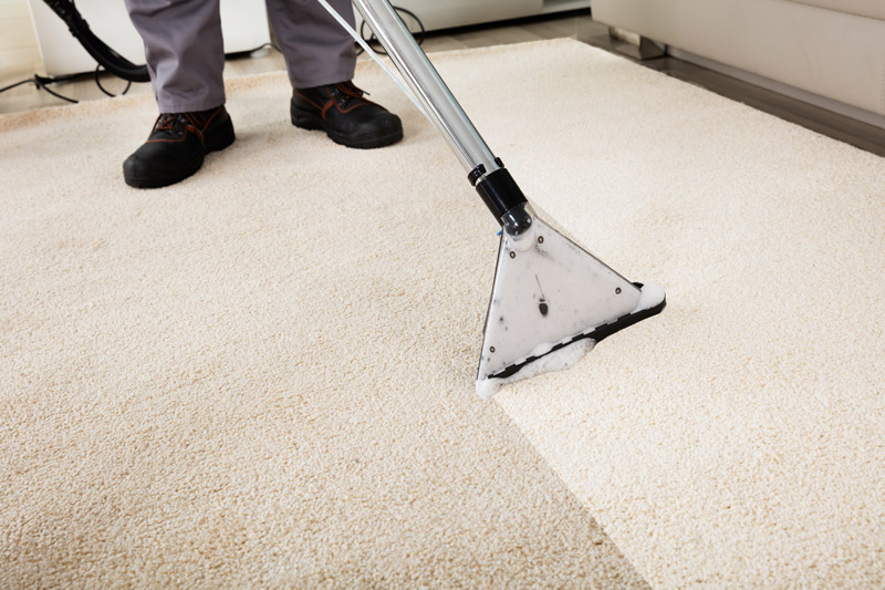 Carpet Cleaning MT